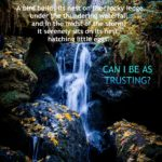 Can I Be As Trusting?